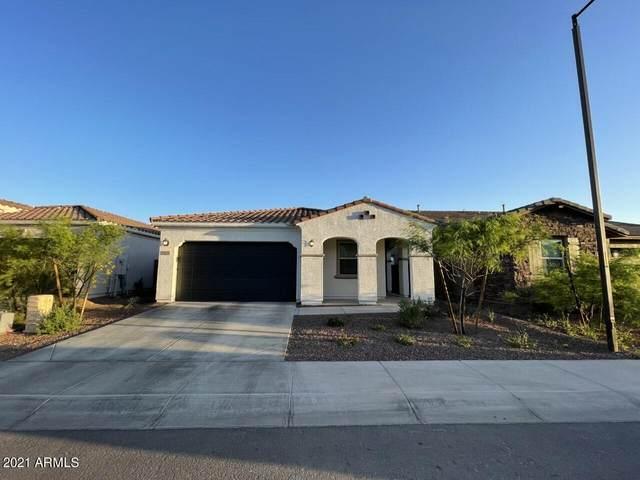 9233 W Willow Bend Lane, Phoenix, AZ 85037 (MLS #6223244) :: Yost Realty Group at RE/MAX Casa Grande