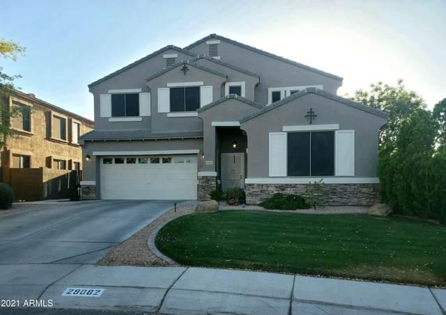 29082 N Broken Shale Drive, San Tan Valley, AZ 85143 (MLS #6223259) :: The Riddle Group