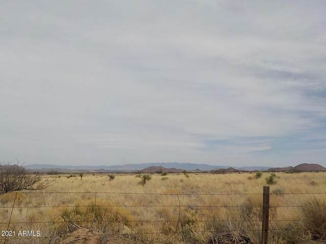 .90 ac Willcox Road, Pearce, AZ 85625 (MLS #6223287) :: The Carin Nguyen Team