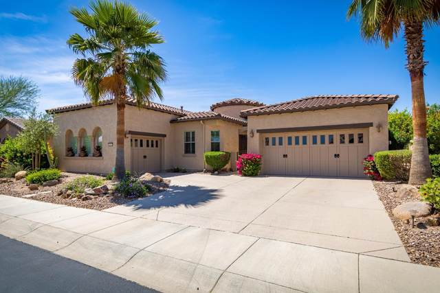 28062 N 123RD Lane, Peoria, AZ 85383 (MLS #6223296) :: Walters Realty Group