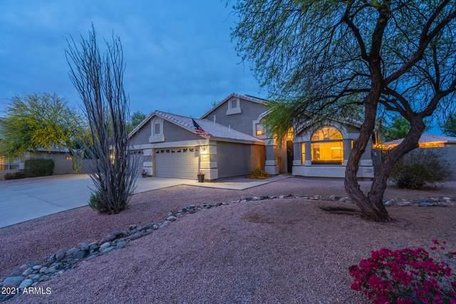 1776 E Sierra Madre Court, Gilbert, AZ 85296 (MLS #6223352) :: Yost Realty Group at RE/MAX Casa Grande