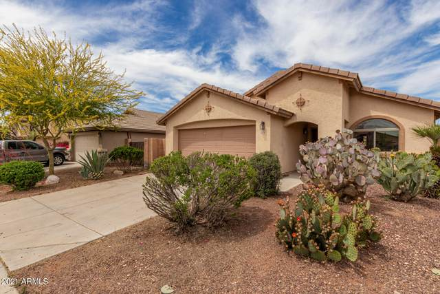 25742 W St Charles Court, Buckeye, AZ 85326 (MLS #6223367) :: Zolin Group