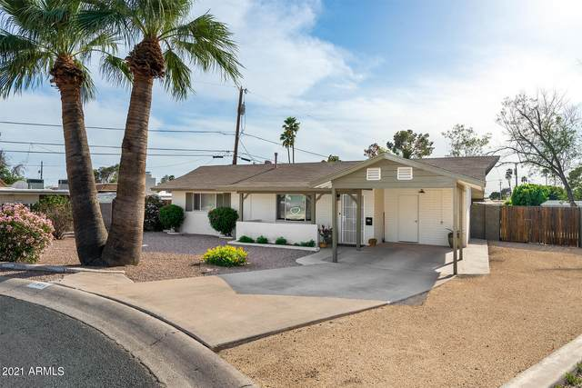 6804 N 17TH Street, Phoenix, AZ 85016 (MLS #6223422) :: Zolin Group