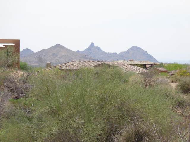10905 E Rising Sun Drive, Scottsdale, AZ 85262 (MLS #6223432) :: neXGen Real Estate