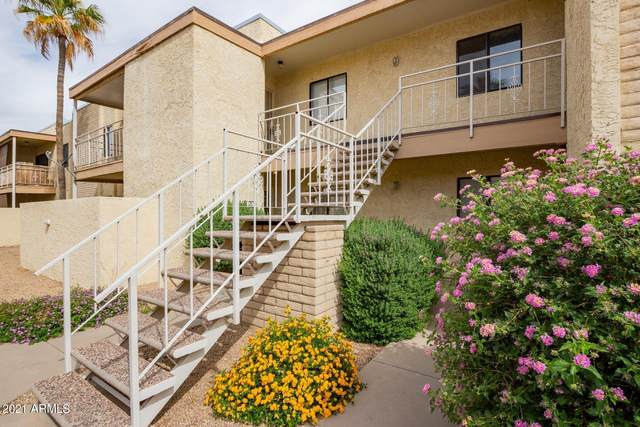 16635 N Cave Creek Road #227, Phoenix, AZ 85032 (MLS #6223497) :: My Home Group