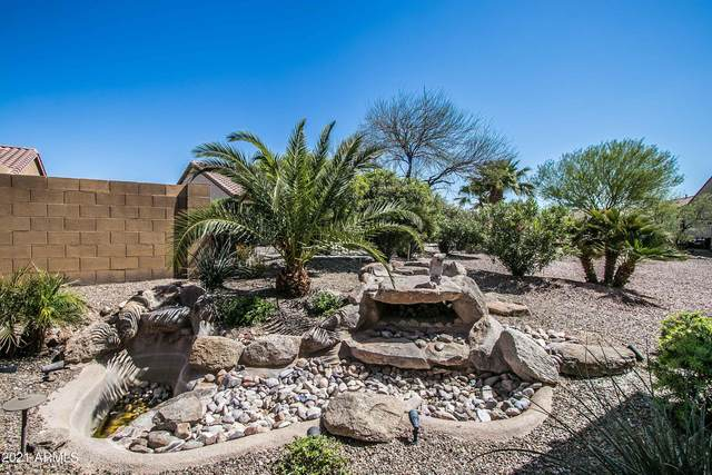 5144 W Nogales Way, Eloy, AZ 85131 (MLS #6223509) :: TIBBS Realty
