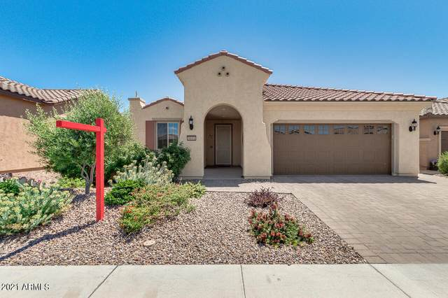 5631 W Cinder Brook Way, Florence, AZ 85132 (MLS #6223514) :: TIBBS Realty