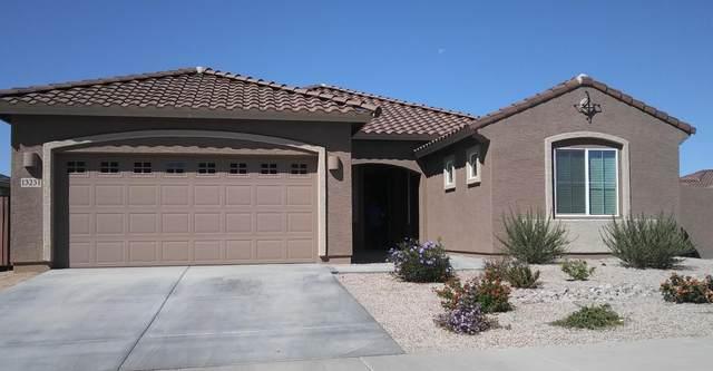 13231 W Cottontail Lane, Peoria, AZ 85383 (MLS #6223520) :: Power Realty Group Model Home Center