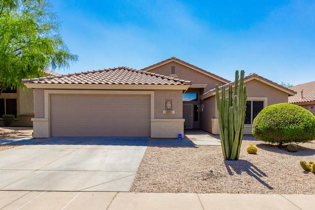 4507 E Thorn Tree Drive, Cave Creek, AZ 85331 (MLS #6223536) :: Yost Realty Group at RE/MAX Casa Grande