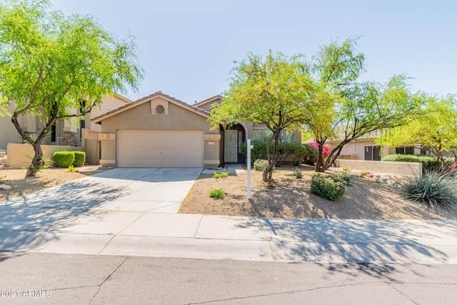10591 E Morning Star Drive, Scottsdale, AZ 85255 (MLS #6223539) :: The Carin Nguyen Team