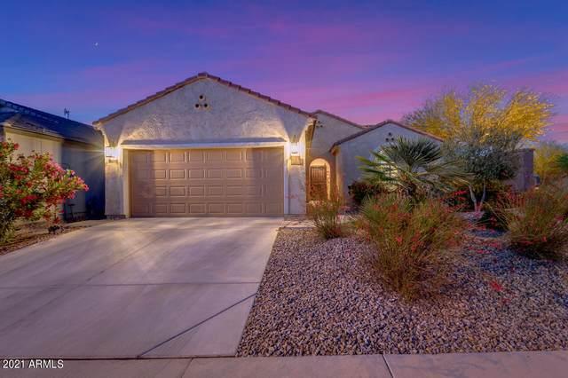 3451 N Balboa Drive, Florence, AZ 85132 (MLS #6223572) :: TIBBS Realty
