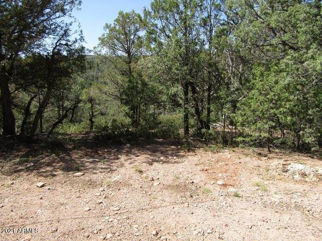 0 Scott Drive, Payson, AZ 85541 (MLS #6223577) :: Klaus Team Real Estate Solutions