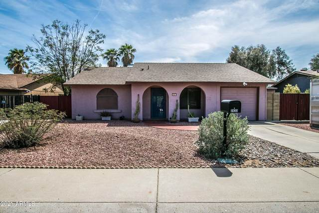 3437 E Libby Street, Phoenix, AZ 85032 (MLS #6223578) :: CANAM Realty Group