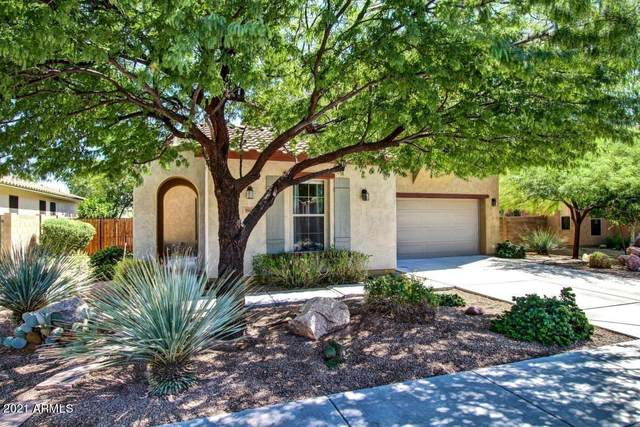 18427 E Azul Court, Gold Canyon, AZ 85118 (MLS #6223609) :: The Riddle Group