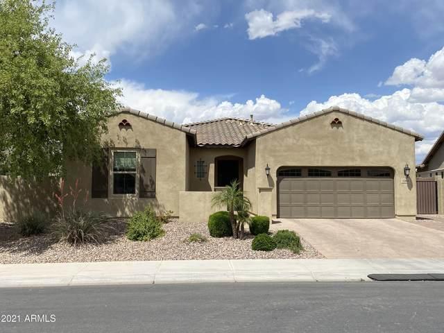 3268 E Creosote Lane, Gilbert, AZ 85298 (MLS #6223634) :: The Property Partners at eXp Realty