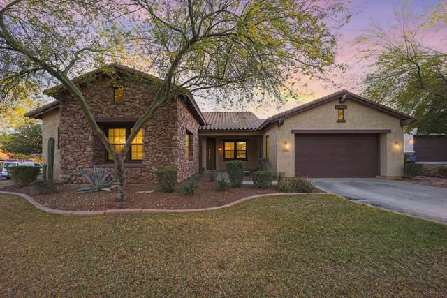 21419 W Brittle Bush Lane, Buckeye, AZ 85396 (MLS #6223648) :: The Property Partners at eXp Realty