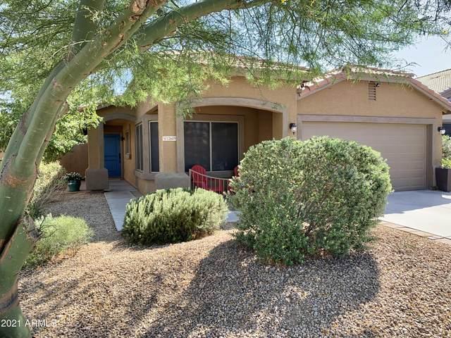 12609 W Fairmount Avenue, Avondale, AZ 85392 (MLS #6223668) :: The Luna Team