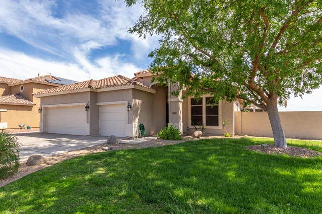 10881 W Angels Lane, Sun City, AZ 85373 (MLS #6223704) :: Zolin Group