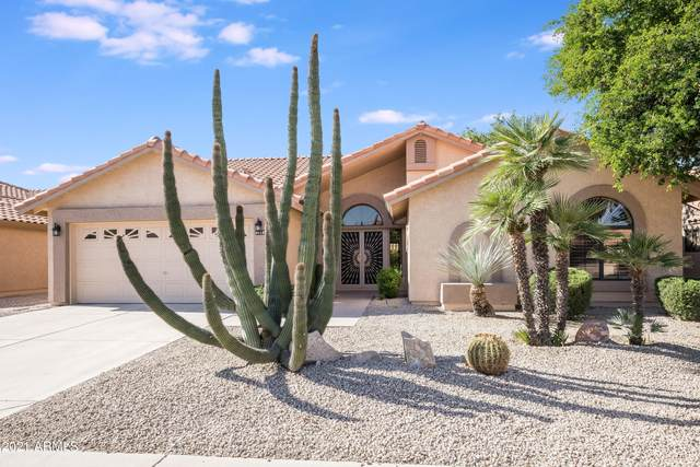 9113 W Oraibi Drive, Peoria, AZ 85382 (#6223710) :: The Josh Berkley Team