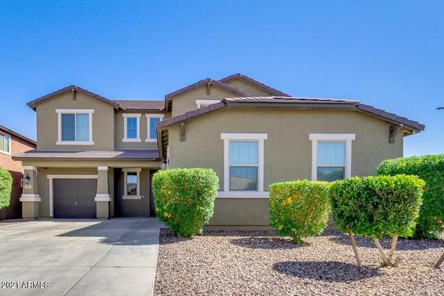 905 W Desert Hollow Drive, San Tan Valley, AZ 85143 (MLS #6223736) :: The Luna Team