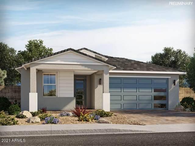 22543 E Rosa Road, Queen Creek, AZ 85142 (MLS #6223745) :: Yost Realty Group at RE/MAX Casa Grande