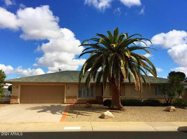 10502 W Concho Circle, Sun City, AZ 85373 (MLS #6223746) :: Zolin Group