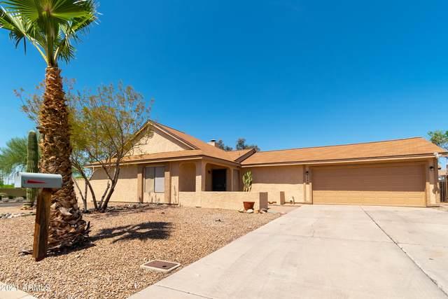 2240 W Mohawk Lane, Phoenix, AZ 85027 (MLS #6223847) :: Yost Realty Group at RE/MAX Casa Grande