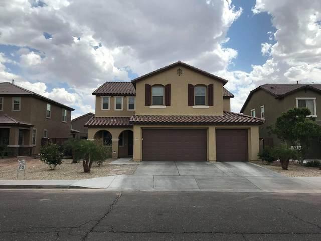 12021 W Overlin Lane, Avondale, AZ 85323 (MLS #6223899) :: Devor Real Estate Associates