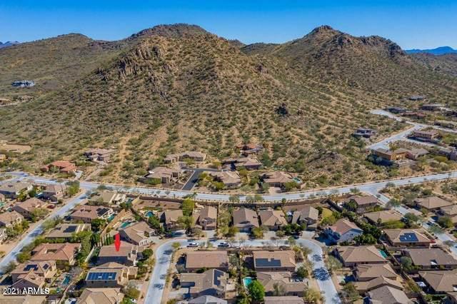 2602 W Luce Drive, Phoenix, AZ 85086 (MLS #6223924) :: The Luna Team