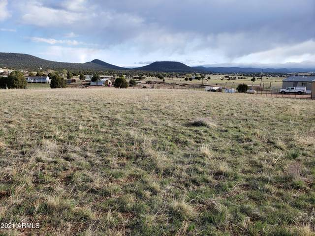 14K Zachariae Ranch Road, Young, AZ 85554 (MLS #6223928) :: Service First Realty