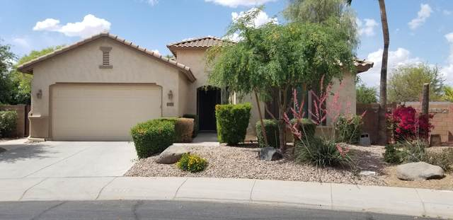 6772 S Black Hills Way, Chandler, AZ 85249 (MLS #6223990) :: Openshaw Real Estate Group in partnership with The Jesse Herfel Real Estate Group