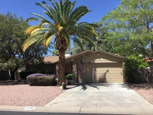 7338 E Edgewood Avenue, Mesa, AZ 85208 (MLS #6224007) :: The Luna Team