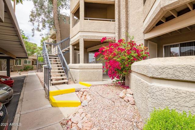 1720 E Thunderbird Road #2031, Phoenix, AZ 85022 (MLS #6224012) :: The Riddle Group