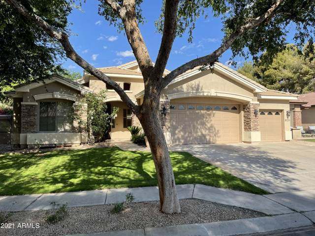 8026 S Stephanie Lane, Tempe, AZ 85284 (MLS #6224013) :: Arizona 1 Real Estate Team