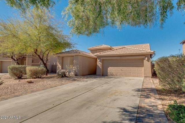 29152 N Red Finch Drive, San Tan Valley, AZ 85143 (MLS #6224024) :: The Riddle Group