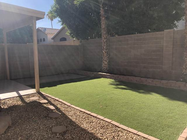 1336 W Wahalla Lane, Phoenix, AZ 85027 (MLS #6224053) :: Zolin Group