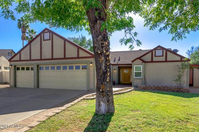 11015 N 55TH Drive, Glendale, AZ 85304 (MLS #6224079) :: My Home Group