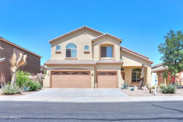 1688 E Elegante Drive, Casa Grande, AZ 85122 (MLS #6224088) :: Howe Realty