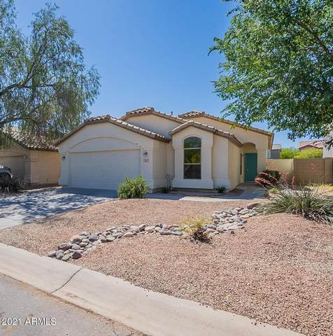 841 E Lovegrass Drive, San Tan Valley, AZ 85143 (MLS #6224091) :: Klaus Team Real Estate Solutions