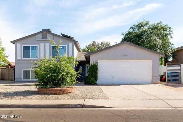 719 E Palomino Drive, Gilbert, AZ 85296 (MLS #6224110) :: Yost Realty Group at RE/MAX Casa Grande