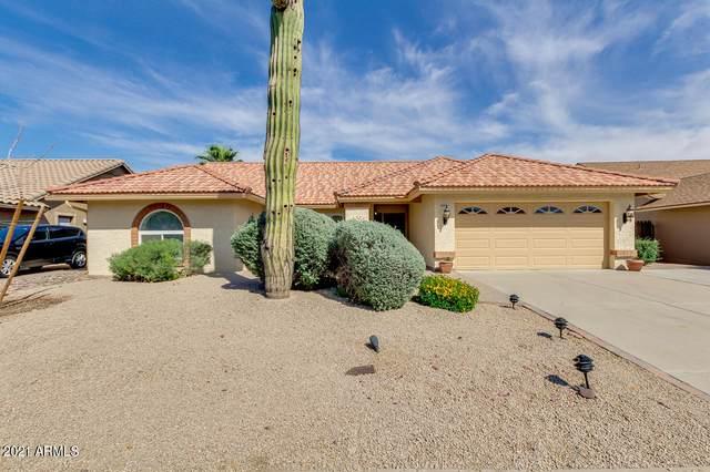 15221 N 42nd Place, Phoenix, AZ 85032 (MLS #6224125) :: Yost Realty Group at RE/MAX Casa Grande