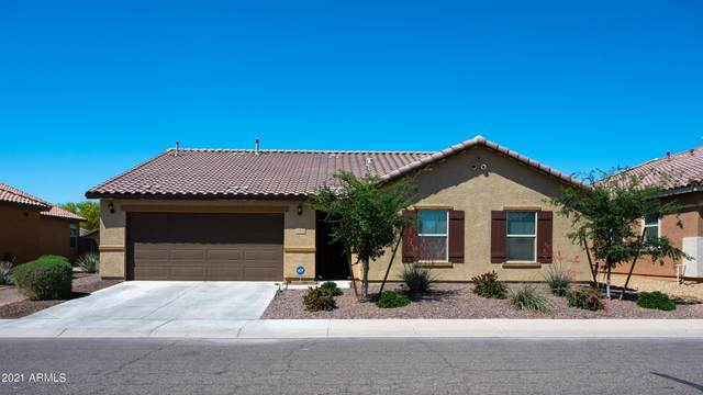 40684 W Pryor Lane, Maricopa, AZ 85138 (MLS #6224157) :: Howe Realty