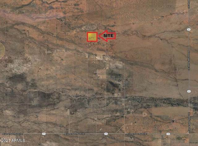 12500 S Los Gatos Trail, Pearce, AZ 85625 (MLS #6224191) :: My Home Group