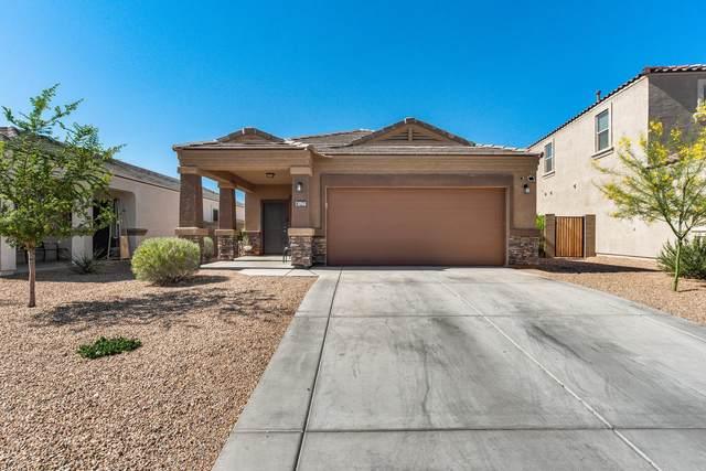 30968 W Picadilly Road, Buckeye, AZ 85396 (MLS #6224201) :: Yost Realty Group at RE/MAX Casa Grande