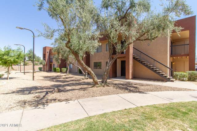 3810 N Maryvale Parkway #1025, Phoenix, AZ 85031 (MLS #6224266) :: The Laughton Team