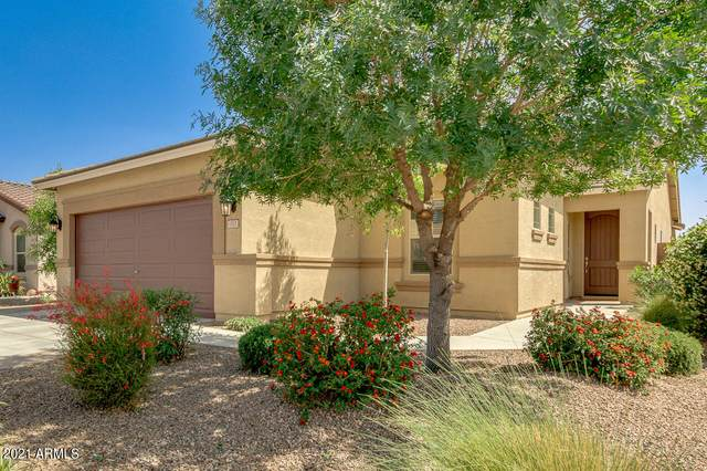 1521 W Princess Tree Avenue, San Tan Valley, AZ 85140 (MLS #6224273) :: The Helping Hands Team
