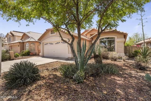 3025 E Wagoner Road, Phoenix, AZ 85032 (MLS #6224313) :: The Property Partners at eXp Realty