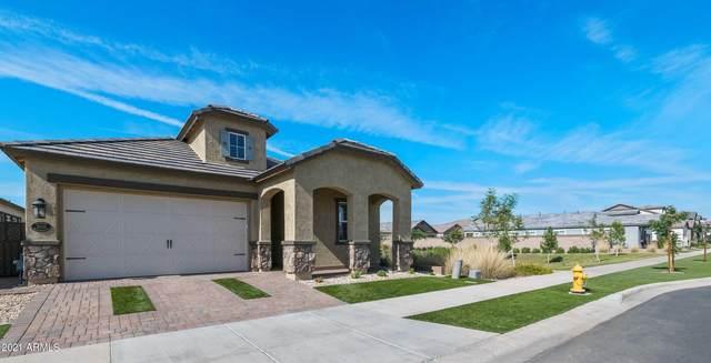10116 E Nichols Avenue, Mesa, AZ 85209 (MLS #6224348) :: The Copa Team | The Maricopa Real Estate Company