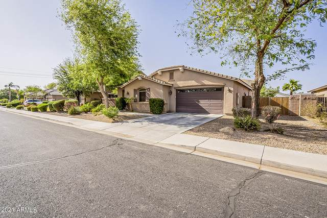 2462 E Carob Drive, Gilbert, AZ 85298 (MLS #6224353) :: Openshaw Real Estate Group in partnership with The Jesse Herfel Real Estate Group