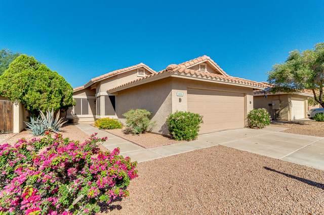 14406 S 43RD Street, Phoenix, AZ 85044 (MLS #6224364) :: Kepple Real Estate Group